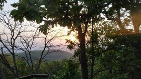 偷偷地走在树后的太阳 免版税图库摄影