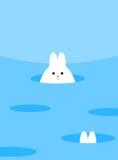偷看在孔外面的白色逗人喜爱的兔宝宝 附近更多孔,一个o 免版税库存图片
