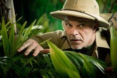 偷看通过植物的冒险家 免版税库存图片
