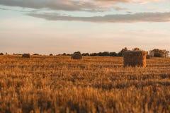 储蓄干草风景 图库摄影