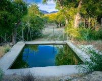 储蓄池塘在沙漠 库存图片