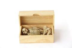 储蓄照片:在木箱子,在白色bac的静物画的人的骨骼 库存照片