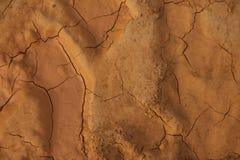 储蓄照片-接近干燥,破裂的干燥地球纹理  免版税图库摄影