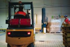 储藏总之衣裳的雇员,司机Reachtruck繁忙研究继续前进装载者板台的后勤学 在manuf的人劳方 免版税库存图片