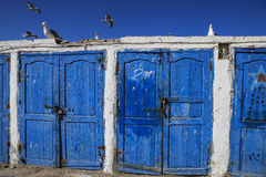 储藏渔夫索维拉,摩洛哥 免版税图库摄影