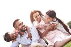 傻瓜 四口之家坐拥抱smilin的一个象草的领域 免版税库存照片