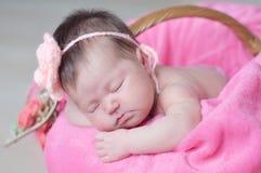 婴儿睡觉在与被编织的花的篮子的在头,女婴说谎在桃红色毯子的,逗人喜爱的孩子,新出生 图库摄影