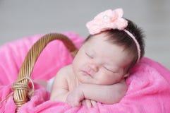 婴儿睡觉在与被编织的花的篮子的在头,女婴说谎在桃红色毯子的,逗人喜爱的孩子,新出生 免版税库存图片