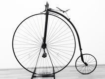 儿童三轮车自行车 免版税库存图片