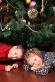 儿童下圣诞树 库存图片
