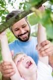 儿童与力量的climbig树 免版税库存照片