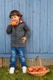 儿童孩子男孩吃苹果果子充分的身体纵向格式autum 库存照片