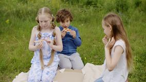 儿童小组在雏菊沼地上花费夏时 影视素材