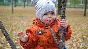 儿童步行在秋天公园 影视素材