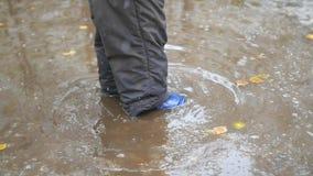 儿童步行通过水坑在秋天公园 股票视频