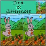 儿童比赛:发现区别 一点逗人喜爱的野兔 免版税库存照片