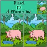 儿童比赛:发现区别 逗人喜爱的小的猪 免版税库存照片