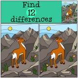 儿童比赛:发现区别 逗人喜爱的小的羚羊 库存照片