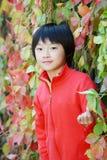 儿童汉语 库存照片