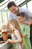 儿童温室帮助的人二年轻人 免版税图库摄影
