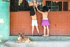 儿童游戏在围场 免版税库存照片