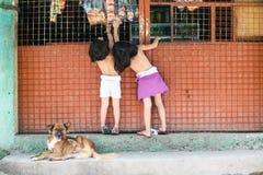 儿童游戏在围场 免版税图库摄影