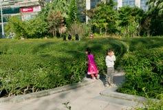 儿童游戏捉迷藏在城市的一个绿色公园 库存照片