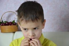 儿童男孩拾起与他的左手的有些樱桃从碗,特写镜头 免版税库存照片