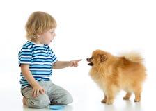 儿童男孩训练波美丝毛狗狗 背景查出的白色 库存照片