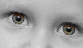 儿童的眼睛 免版税库存照片