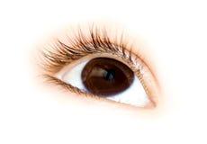 儿童眼睛 免版税库存照片