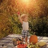 儿童童年儿童幸福概念 野餐的愉快的孩子 免版税库存照片
