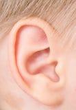 儿童耳朵 库存照片
