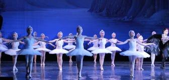 儿童芭蕾舞女演员跳舞芭蕾天鹅湖 免版税库存照片