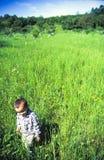 儿童草甸走 库存图片