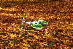 儿童说谎在秋叶的` s自行车在公园 库存照片