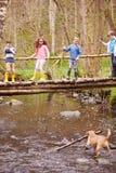 儿童过桥当在小河的狗戏剧 免版税图库摄影