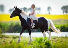 儿童骑乘马在草甸 库存图片