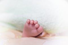 婴儿脚 图库摄影