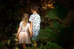兄弟和姐妹在一个神仙的森林里 免版税库存照片