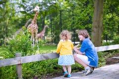 兄弟和姐妹观看的长颈鹿在动物园里 库存照片