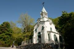 兄弟安德烈-蒙特利尔-加拿大教堂讲说术的 免版税库存图片
