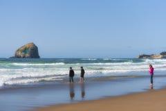 兄弟` s和姐妹沿海滩走 库存图片