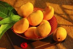 充分一个装饰碗用新鲜的亚尔方索芒果,芒果离开,顶视图 免版税库存图片