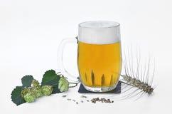 充分品脱啤酒用干大麦和啤酒花球果树 免版税库存图片