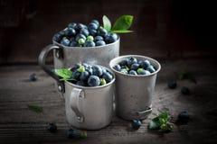 充分在老金属杯子的维生素蓝莓 免版税库存照片