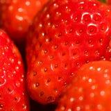 充分地riped草莓 免版税库存图片