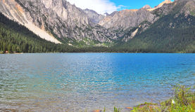 充分大草原花、高山和湖Cuopu 免版税库存照片