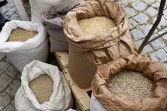 充分大袋用鸡豆,豆,荞麦,小米,麦子,拼写了,扁豆, Einkorn麦子五谷 豆、五谷和s品种  库存照片