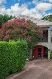 充分夹竹桃在一个房子前面的花在村庄Sain 免版税库存图片